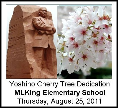Tree Dedication Graphic