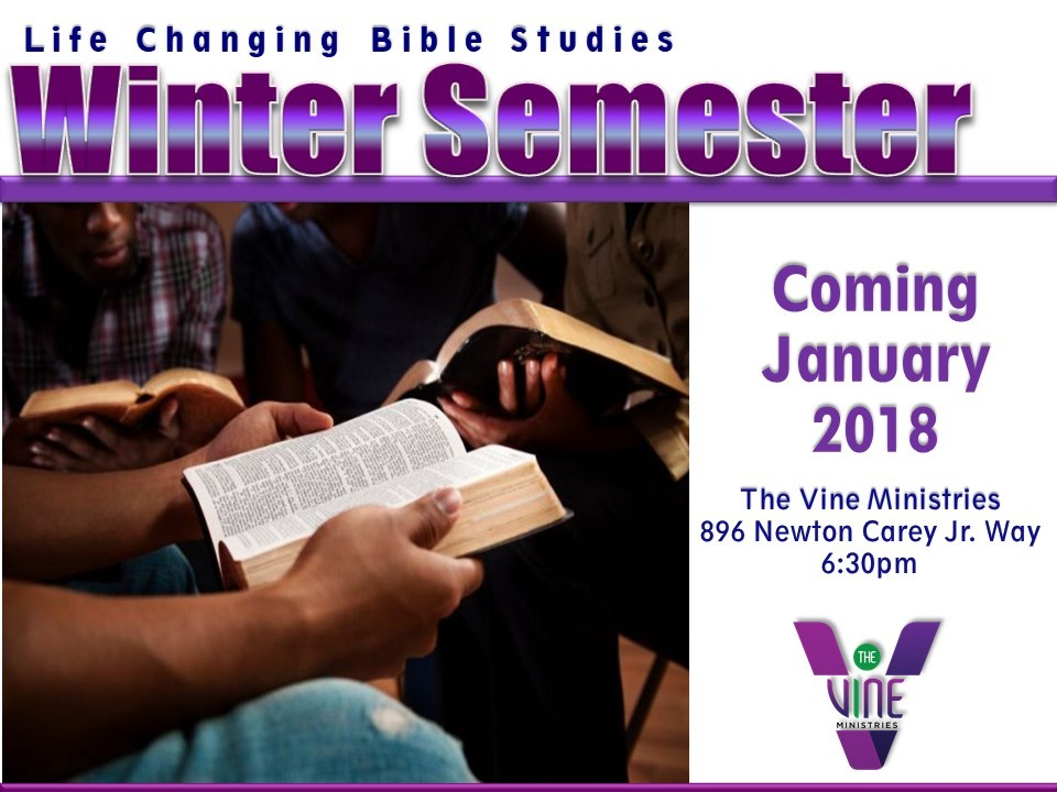 True Vine Ministries - Life Changing Bible Studies