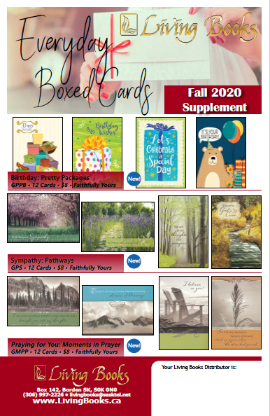 Everyday Boxed Cards Fall 2020