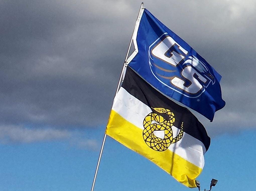 Flags3-GSSNK.jpg