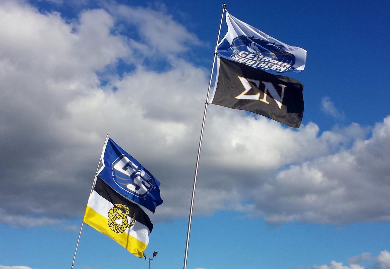 Flags3L.jpg