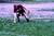 Thumb_sae_scde_2015_david_simone_softball_classic_-128