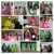 Thumb_pictures18